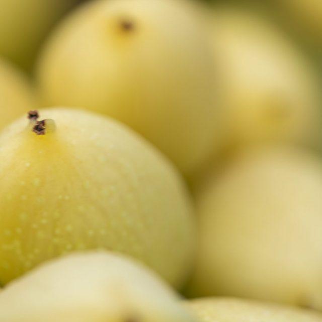 Sobre el origen del pistacho y otras leyendas